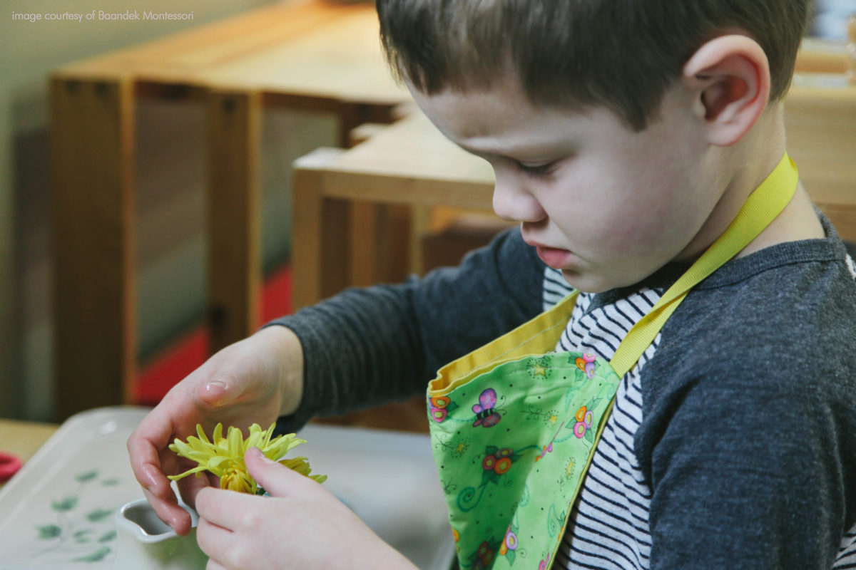 Child working with flower cuttings