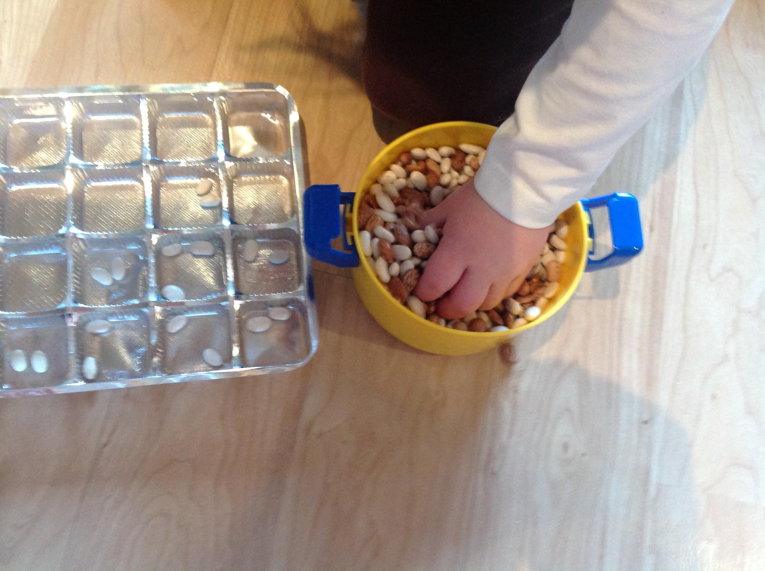 beansorting